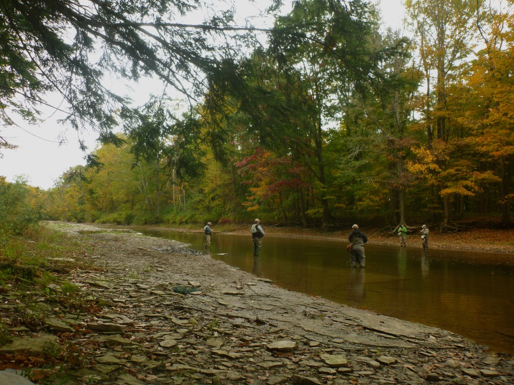 Fly Fishing on Elk Creek